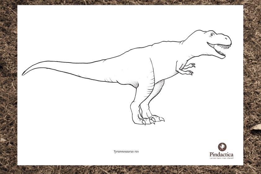 dinosaurier und andere ausmalbilder  pindactica