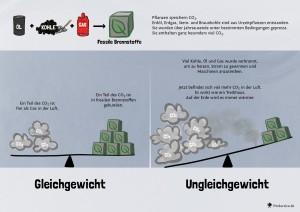 10 CO2- Gleichgewicht
