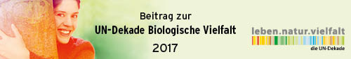 161071_018_UN-Dekade_Logo_Beitrag-2017_500x85px