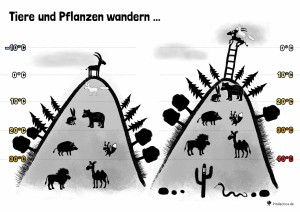 14 Klimawandel – Tiere und Pflanzen wandern